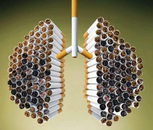 587 Как может курение влиять на Ваше здоровье?