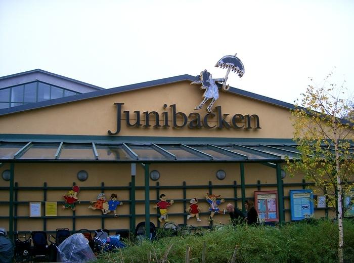 Швеция. Юнибаккен.