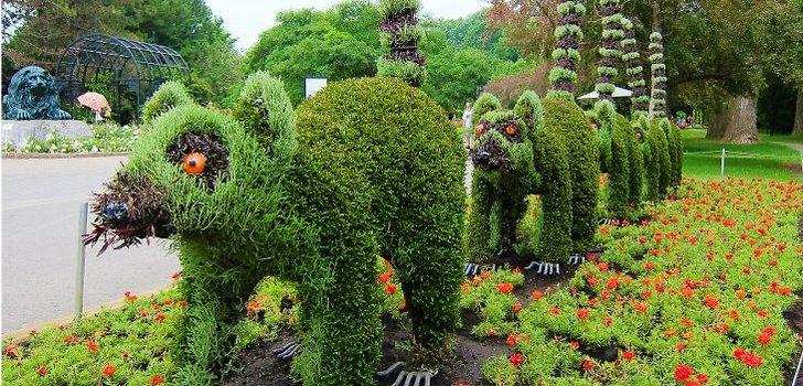 2926 Румыния. Бухарестский ботанический сад.