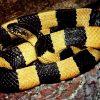 2978 Змея Ленточный крайт