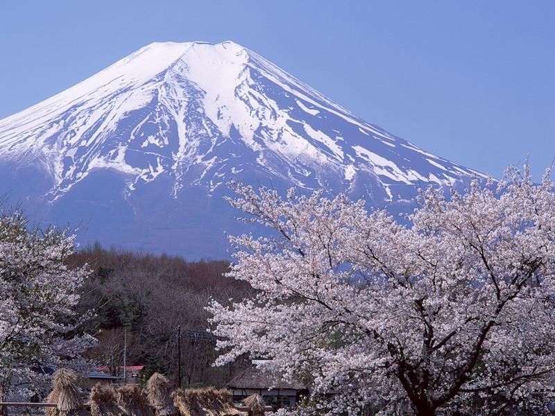 Япония. Фудзияма.