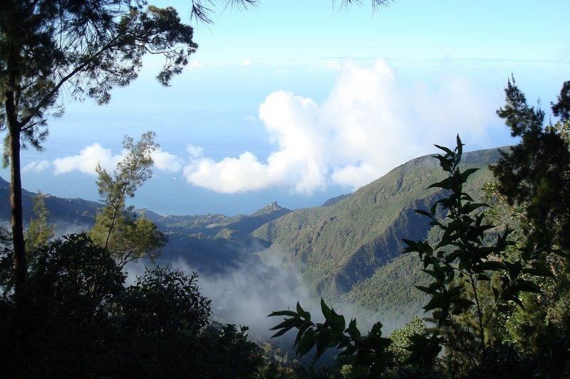 Венесуэла. Национальный парк Мочима.
