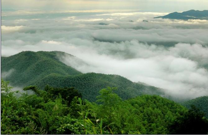 Венесуэла. Национальный парк Моррокой.