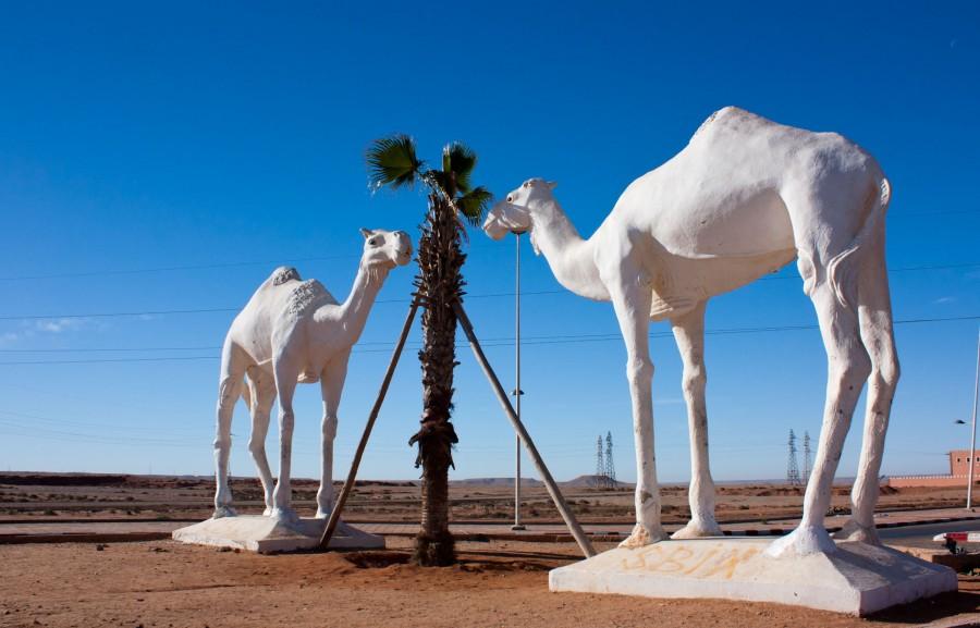 4178 Марокко. Тан-Тан.