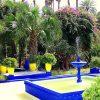 Марокко. Сад Мажорель.