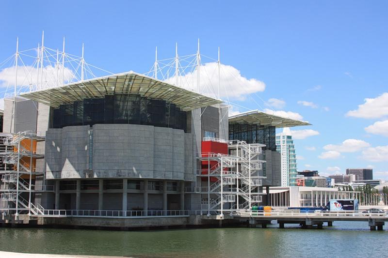 2646 Португалия. Лиссабонский океанариум.