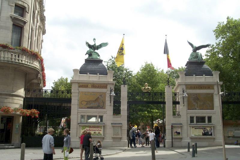 2489 Бельгия. Антверпенский зоопарк.