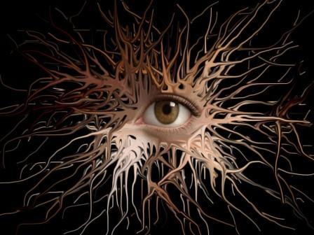 5816 Народные средства. Нервная система.