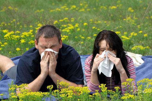 Народные средства. Лимфоузлы, Мышечные судорги, Аллергия.