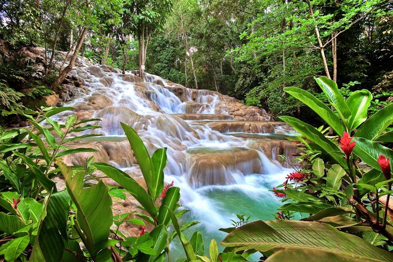 Ямайка. Водопады Даннс-Ривер.