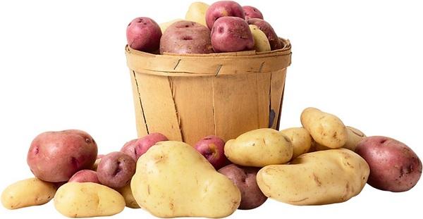 6342 Что полезно кушать? Картофель.