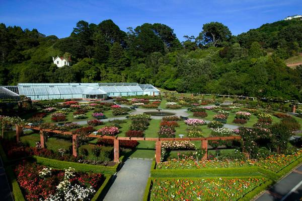 Новая Зеландия. Веллингтон Ботаник Гарден.