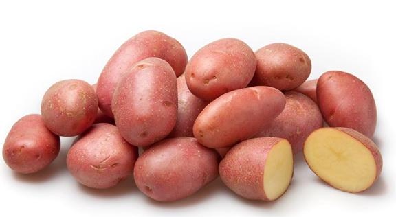 Картофель, сорт Альвара.
