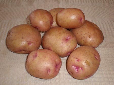 Картофель, сорт Бородянский розовый.