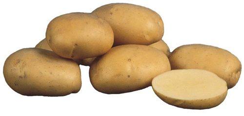Картофель, сорт Агаве.