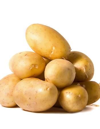 11799 Картофель, сорт Курас.