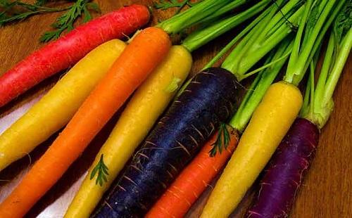 Морковь. Описание, характеристика, свойства