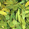Растение Александрийский лист фото - 4855 100x100