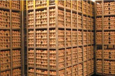 20483 Сбор и хранение яиц для племенных целей