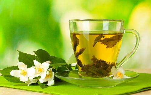 Кустарник Зеленый чай