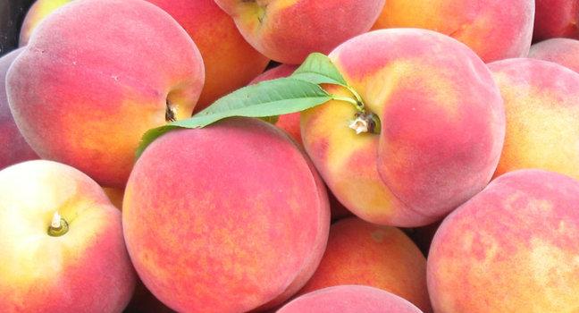 Персик, сорт Золотой юбилей