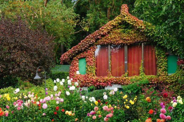 Загородное строительство. Дом и дача