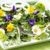 Съедобные цветы фото - 10101 100x100