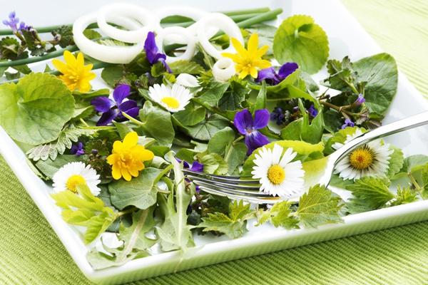 цветы съедобные фото