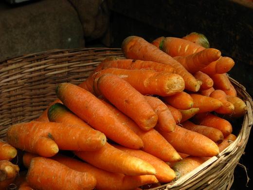 25288 Хранение моркови