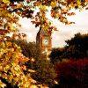 Догнать золотую осень в Англии фото - 11375 100x100