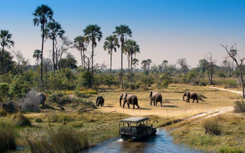 Путешествие по Ботсване