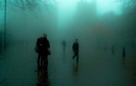 В тумане будних дней фото - 101 540x343