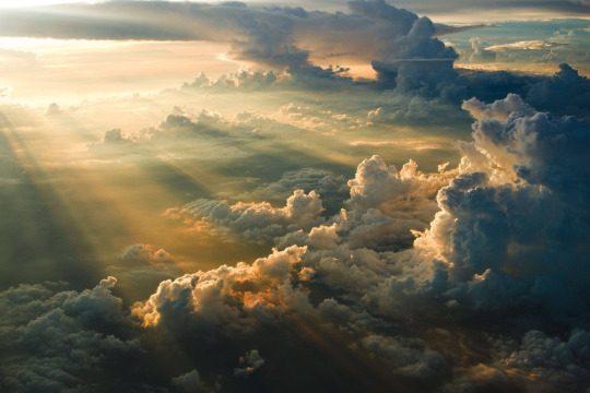 Можно ли почувствовать красоту природы фото - 35 540x360