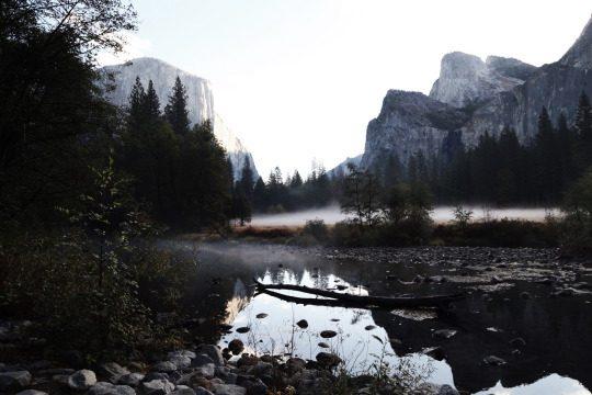 Можно ли почувствовать красоту природы фото - 59 540x360