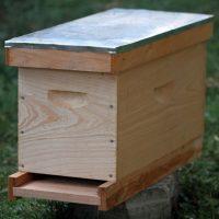 27861 Как сделать нуклеус для пчел своими руками