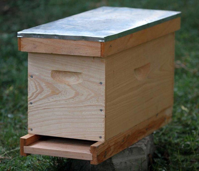 Как сделать нуклеус для пчел своими руками