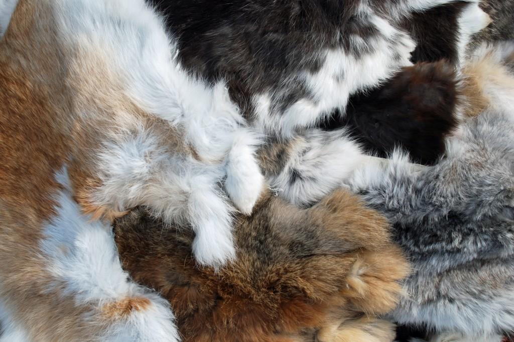 Вычинка шкурок кроликов