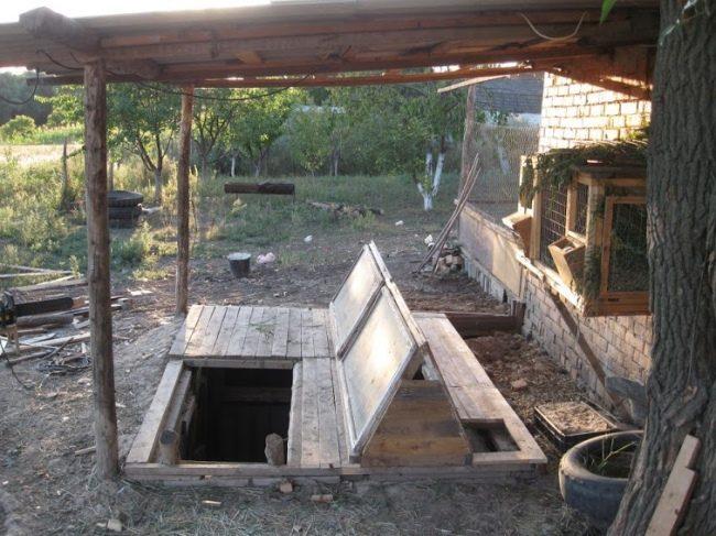 Выращивание кроликов в яме фото - 14406 650x487