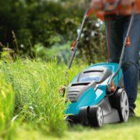 29170 Как правильно ухаживать за газоном