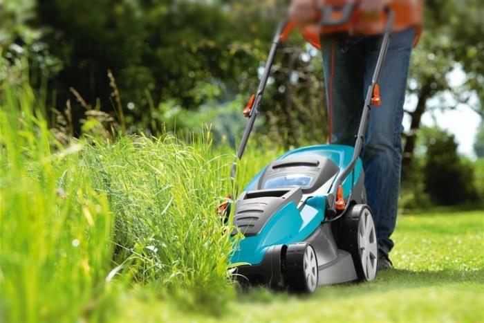 Как правильно ухаживать за газоном