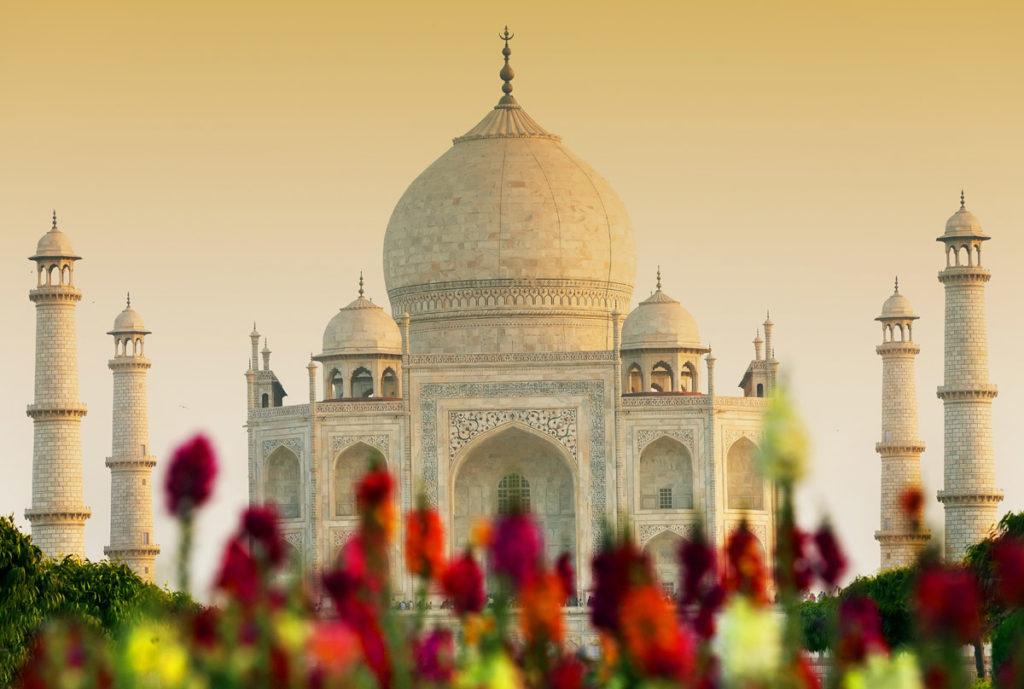 В Индию за приключениями фото - 23107 1024x689