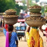 В Индию за приключениями фото - 23108 200x200