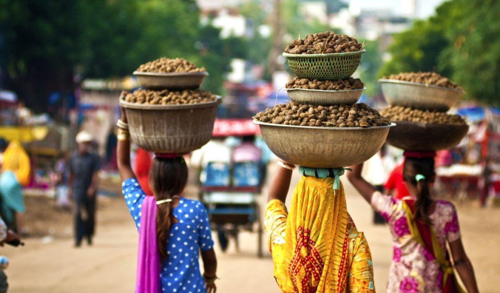 В Индию за приключениями