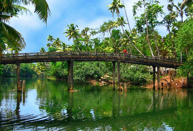 Индия, Керала