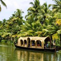 Индия, Керала фото - 23350 200x200