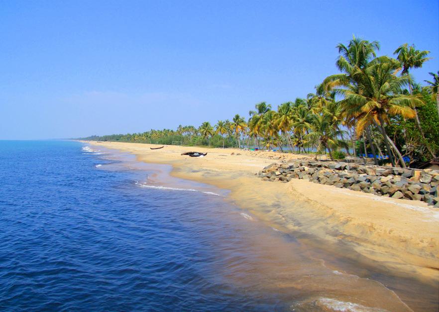 Индия, Керала фото - 23351