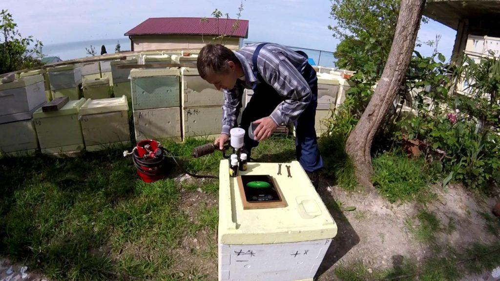 Для чего пчеловодам нужна дым-пушка фото - 24965 1024x576