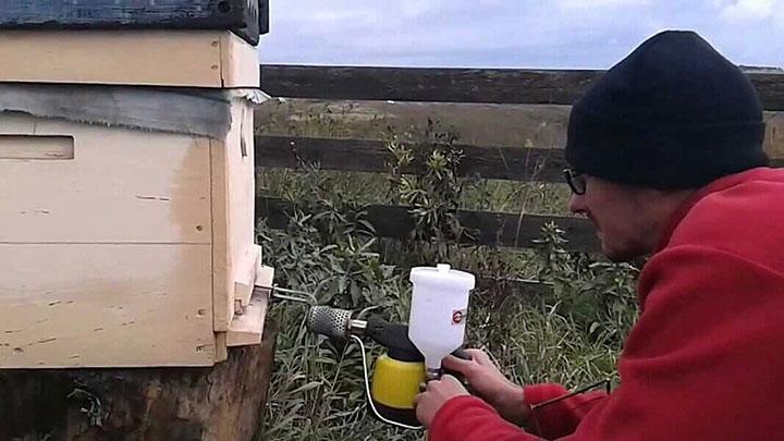 Для чего пчеловодам нужна дым-пушка фото - 24966