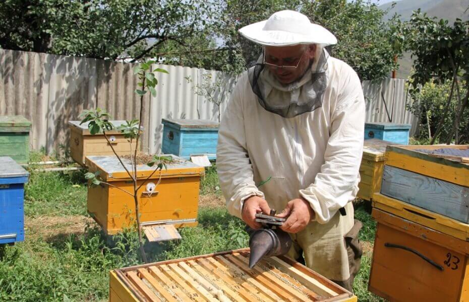 Дымарь для пчел — какой выбрать и как пользоваться фото - 25515
