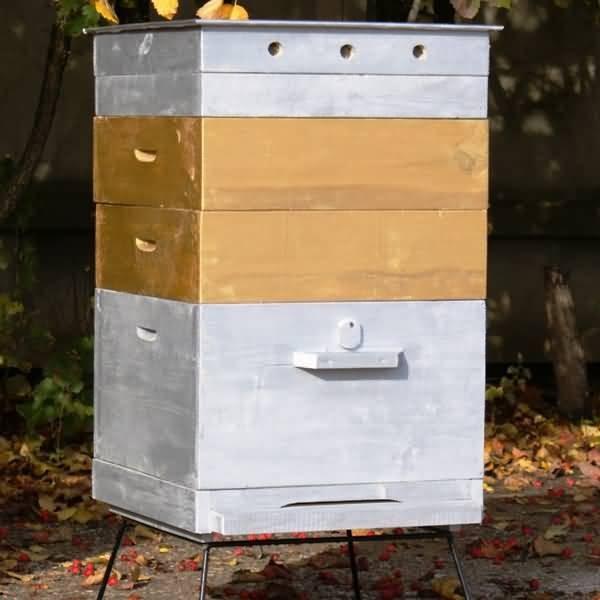 Состав пчелиной семьи фото - 25905